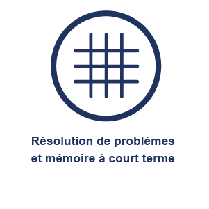 picto_resolution_problemes